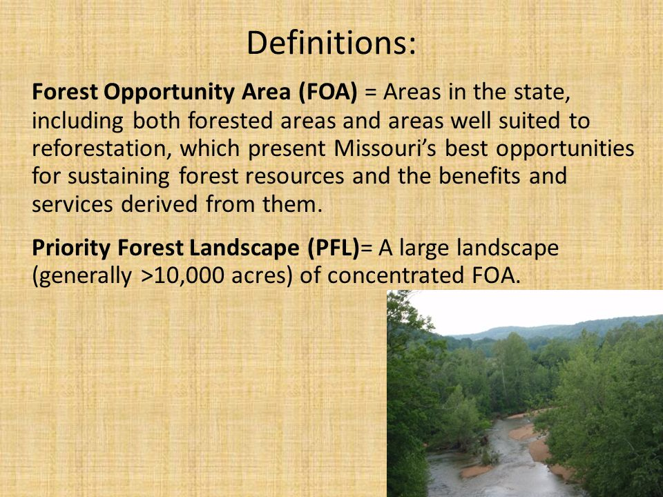 Step One: Forest Opportunity Model ¼ acre grid cells are evaluated w/ 8 Data Sets: 1.