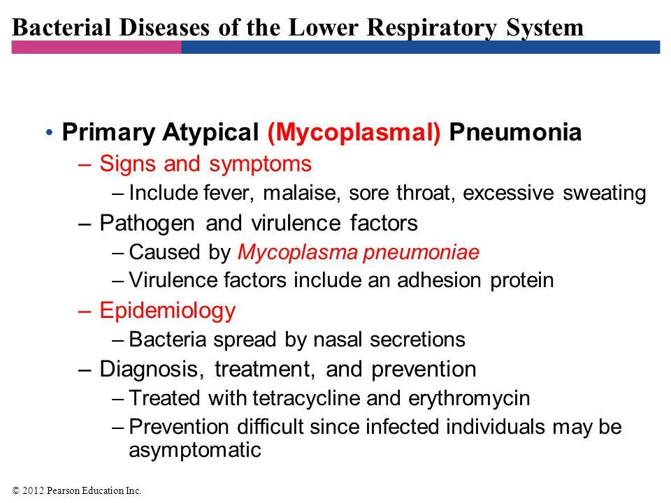 Figure 22.6 Pleomorphic forms of Mycoplasma