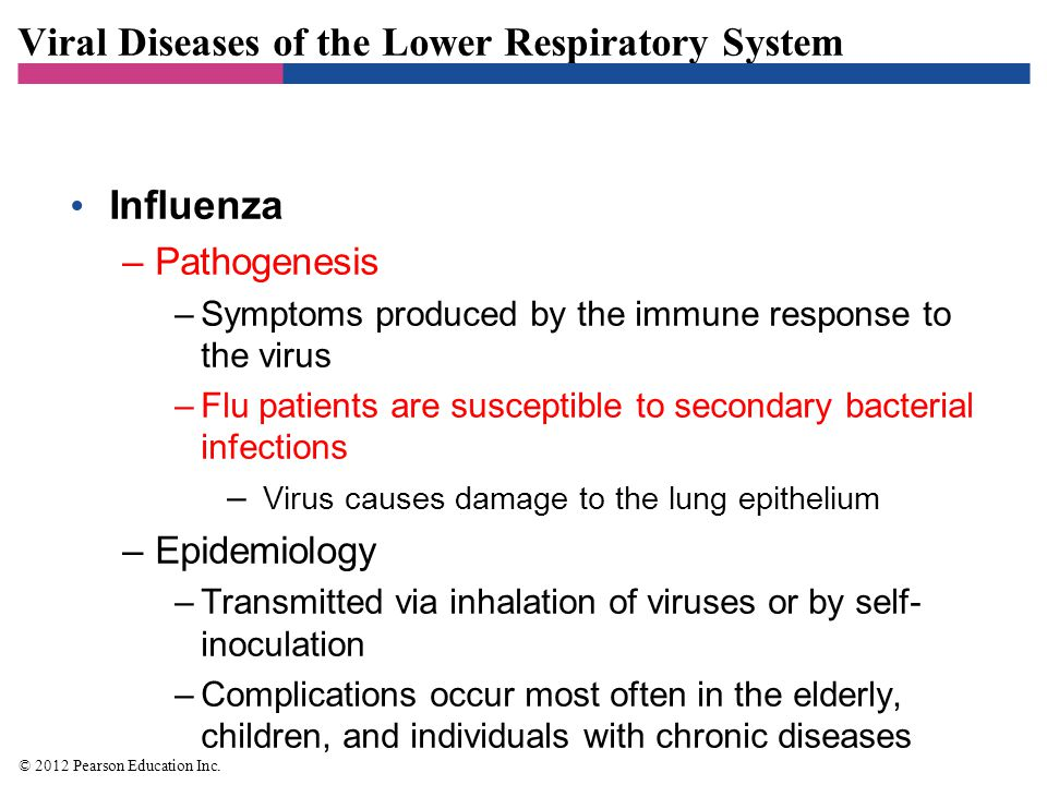 Viral Diseases of the Lower Respiratory System Influenza –Diagnosis, treatment, and prevention –Signs and symptoms during a community-wide outbreak are often diagnostic –Treatment involves supportive care to relieve symptoms –Oseltamivir and zanamivir can be administered early in infection –Prevent by immunization with a multivalent vaccine © 2012 Pearson Education Inc.
