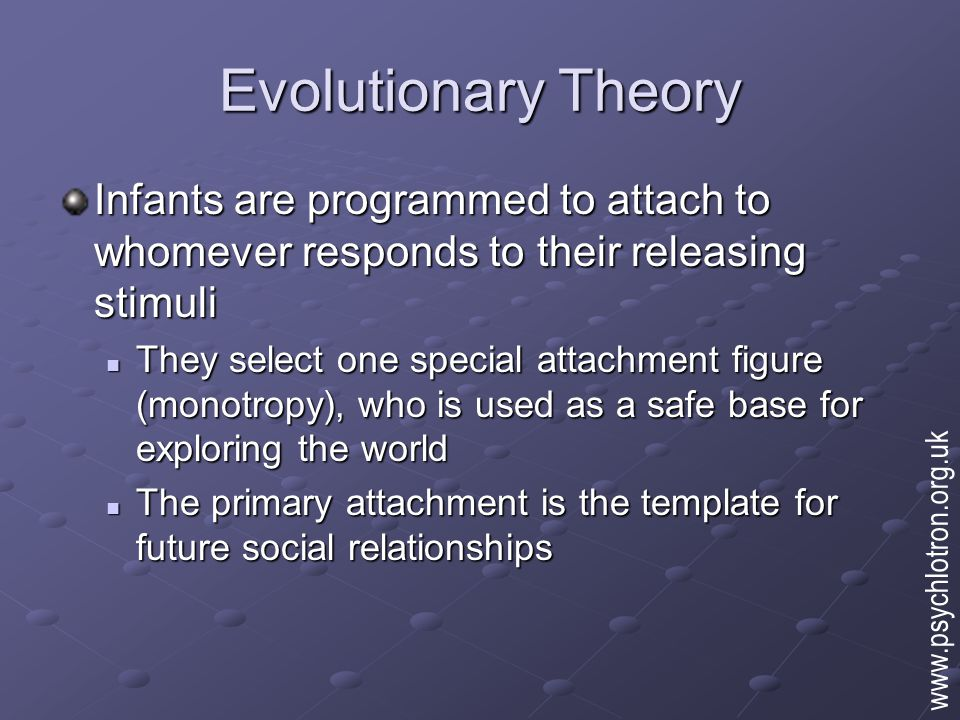 Evolutionary Theory Main hypotheses: Attachments will form with those who respond to child's signals Attachments will form with those who respond to child's signals Attachment will correlate with other aspects of (biological) development Attachment will correlate with other aspects of (biological) development There will be a special attachment figure that is more important than others There will be a special attachment figure that is more important than others Disruption of attachments will have developmental consequences Disruption of attachments will have developmental consequences www.psychlotron.org.uk