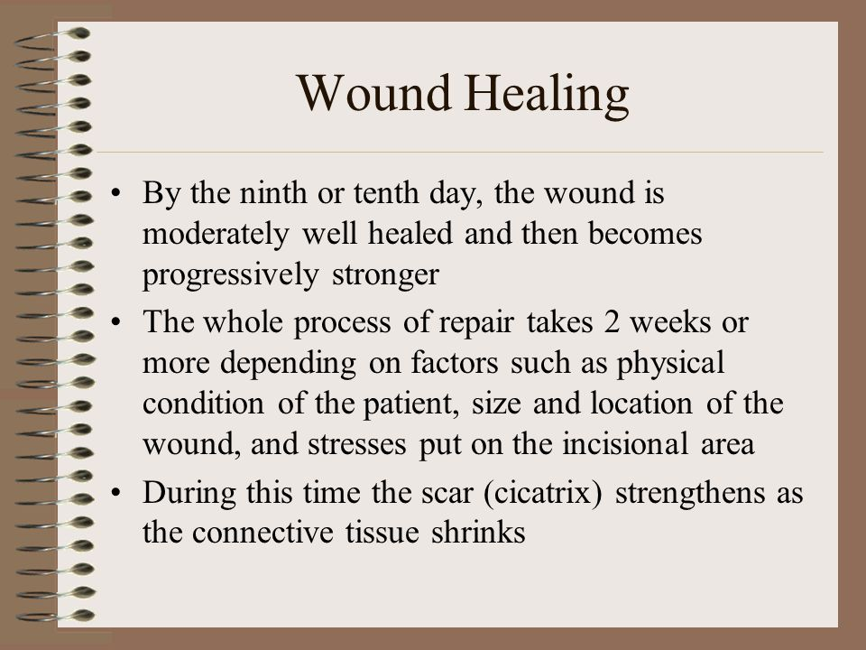 Wound Healing The amount of tissue loss, the existence of contamination or infection and damage to tissue are all factors that determine the type of wound healing that will occur Process of healing takes place in one of three ways –Healing by primary (first) intention –Healing by secondary infection (granulation) –Healing by delayed primary closure (third intention)
