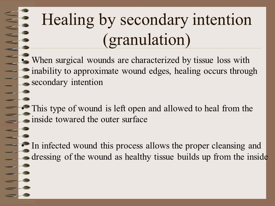 Healing by secondary intention (granulation) The area of tissue loss gradually fills with granulation tissue (fibroblasts and capillaries) Scar tissue is extensive because of the size of the tissue gap that must be closed.