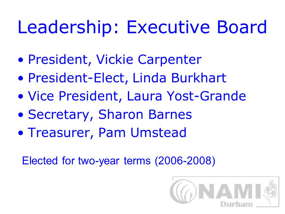 Other Board of Directors Positions Newsletter Editor Newsletter Production Chair Membership Chair Advocacy Chair Membership Chair MIAW Chair Professional Representative Consumer Representative Family to Family Coordinator TUW Durham Health Team Representative Four at-large members