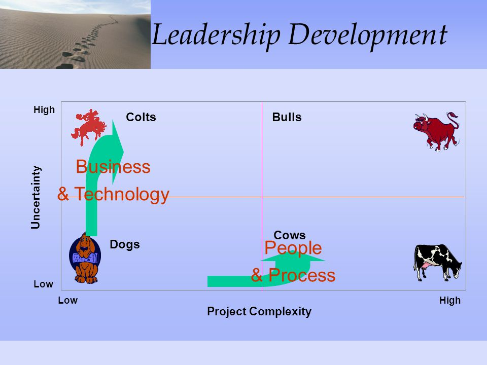 Leadership Development Project Complexity Uncertainty Dogs Cows BullsColts Low High Business & Technology People & Process