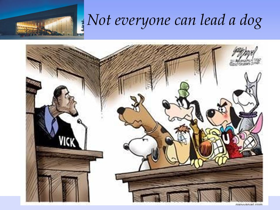Not everyone can lead a dog