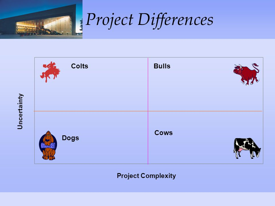 Project Differences Project Complexity Uncertainty Dogs Cows BullsColts