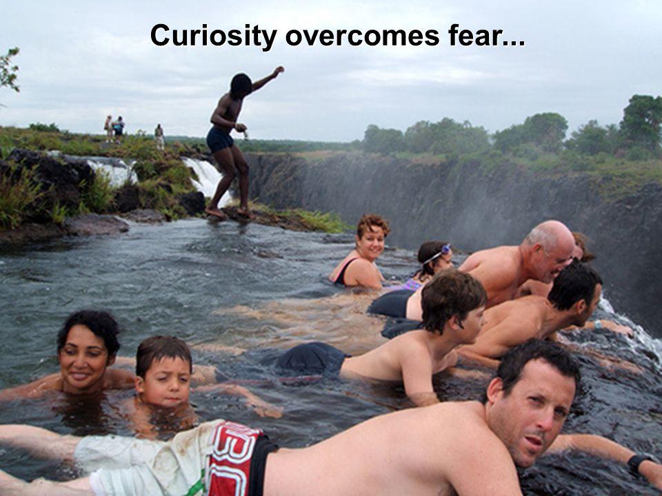Curiosity overcomes fear...