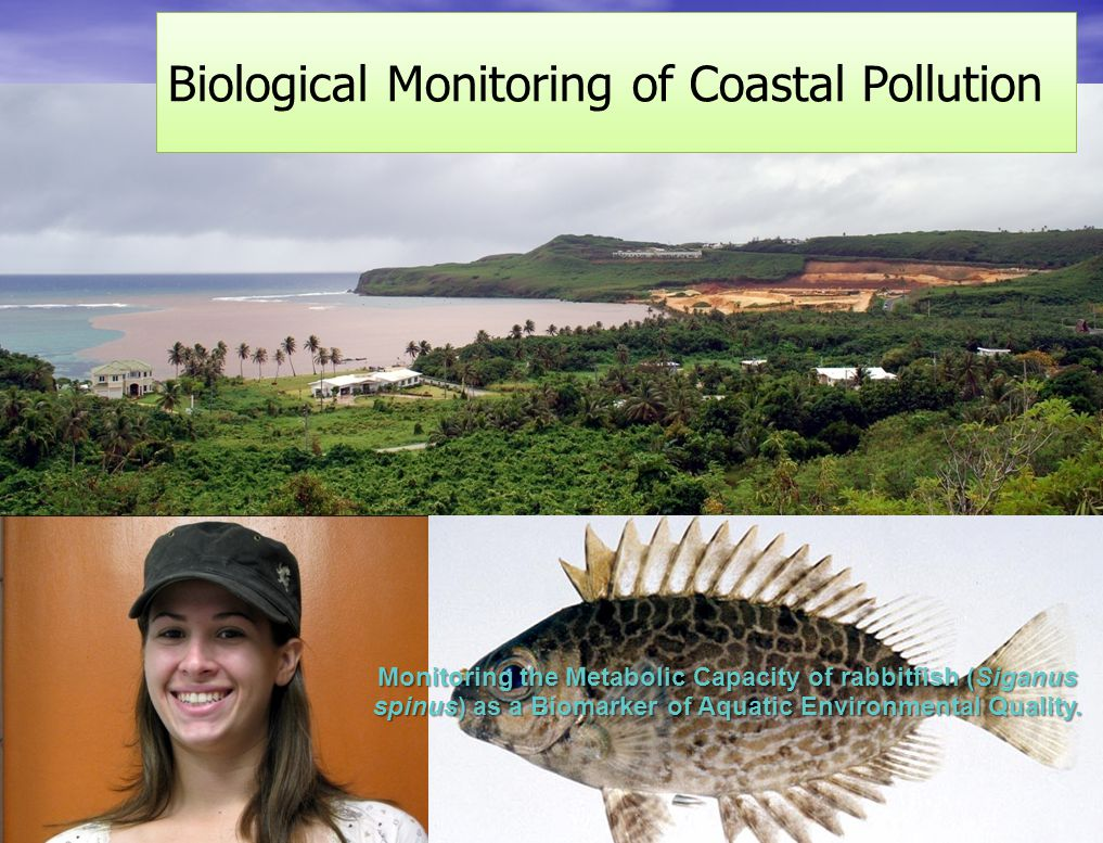Long-term Monitoring of Coral Reef Disturbance and Recovery