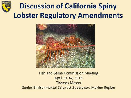 Discussion of California Spiny Lobster Regulatory Amendments Fish and Game Commission Meeting April 13-14, 2016 Thomas Mason Senior Environmental Scientist.