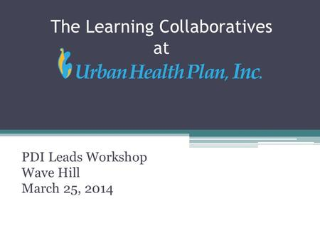 The Learning Collaboratives at PDI Leads Workshop Wave Hill March 25, 2014.