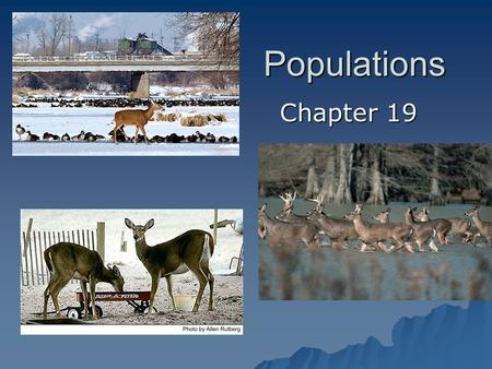 Populations Chapter 19. Understanding Populations Section 19.1.