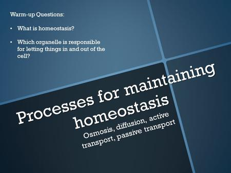 Processes for maintaining homeostasis Osmosis, diffusion, active transport, passive transport Warm-up Questions: What is homeostasis? Which organelle is.