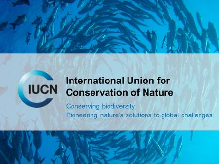 International Union for Conservation of Nature Conserving biodiversity Pioneering nature's solutions to global challenges.