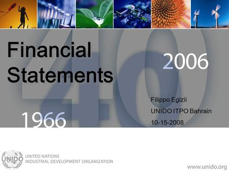 Financial Statements Filippo Egizii UNIDO ITPO Bahrain 10-15-2008.