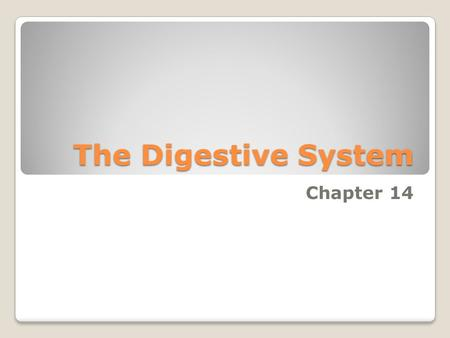 The Digestive System Chapter 14. 1. Digestion- Breakdown of ingested food 2. Absorption- Passage of nutrients into the blood 3. Metabolism- Production.