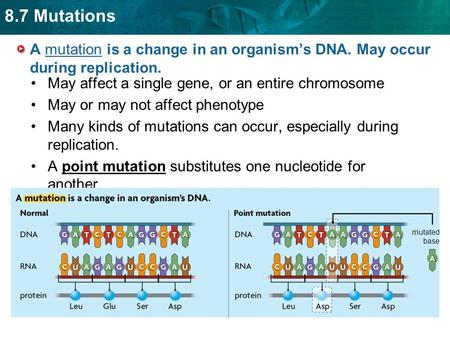 8.7 Mutations A mutation is a change in an organism's DNA. May occur during replication. May affect a single gene, or an entire chromosome May or may not.