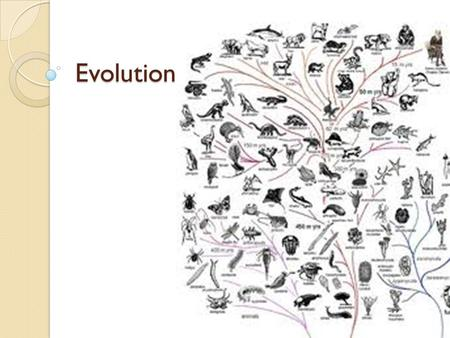 Evolution. Overview Life on earth began more than 3 billion years ago ◦ Fossils have given us many clues to the kind of life that was around 3 billion.