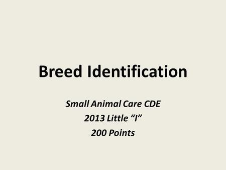 "Breed Identification Small Animal Care CDE 2013 Little ""I"" 200 Points."