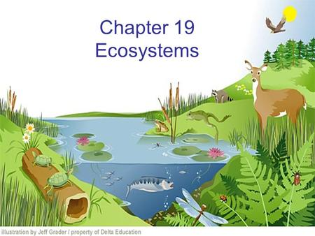 Chapter 19 Ecosystems How Ecosystems Change Ecological succession that begins in a place that does not have soil is called primary succession. The first.