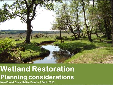 Wetland Restoration Planning considerations New Forest Consultative Panel – 3 Sept 2015.