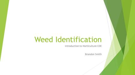 Weed Identification Introduction to Horticulture CDE Brandon Smith.
