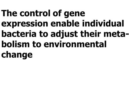The control of gene expression enable individual bacteria to adjust their meta- bolism to environmental change.