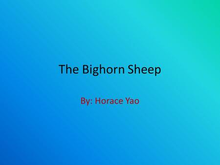 The Bighorn Sheep By: Horace Yao. Great Facts About The Bighorn Sheep They are large enough to continue to be hunted down, unlike other near extinct animals.