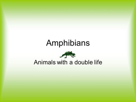 Amphibians Animals with a double life. Primary Characteristic Amphibians have a completely aquatic larvae which transforms into an air breathing, semi-