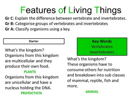 Features of Living Things