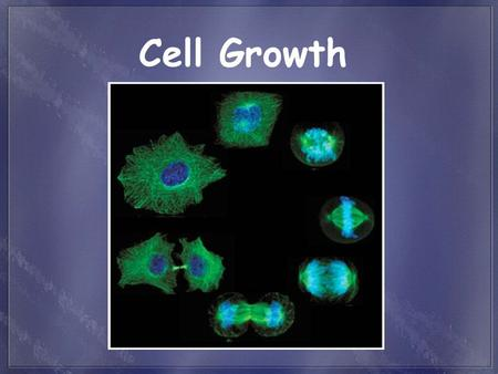 Cell Growth. Cells have distinct phases of growth, reproduction, and normal functions. Just as all species (humans) have life cycles, cells also have.
