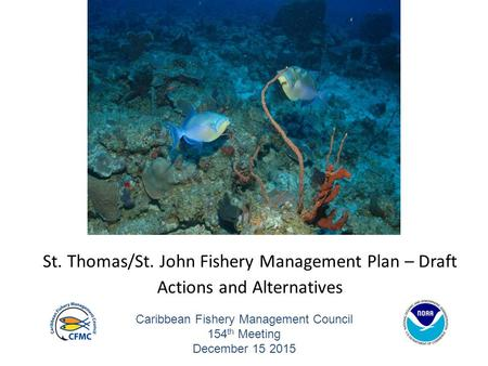 Caribbean Fishery Management Council 154 th Meeting December 15 2015 St. Thomas/St. John Fishery Management Plan – Draft Actions and Alternatives.