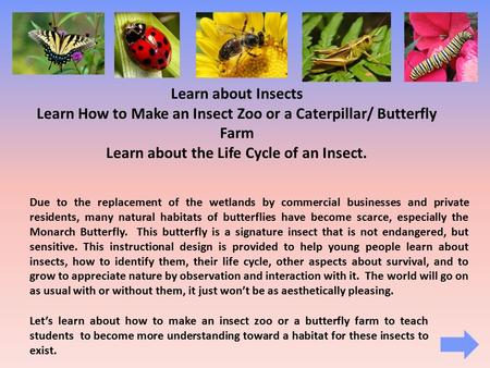 Learn about Insects Learn How to Make an Insect Zoo or a Caterpillar/ Butterfly Farm Learn about the Life Cycle of an Insect. Due to the replacement of.