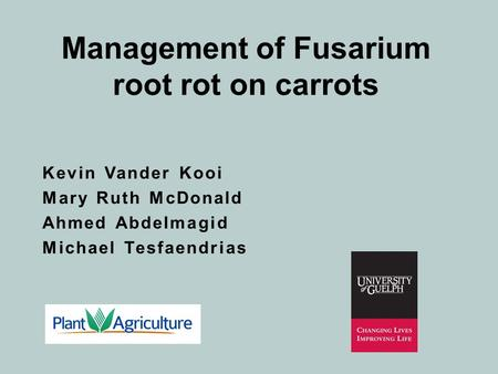 Management of Fusarium root rot on carrots