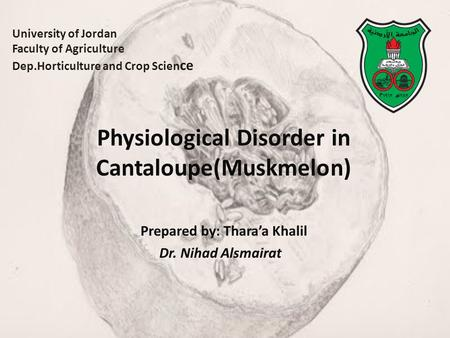 University of Jordan Faculty of Agriculture Dep.Horticulture and Crop Scien ce Physiological Disorder in Cantaloupe(Muskmelon) Prepared by: Thara'a Khalil.