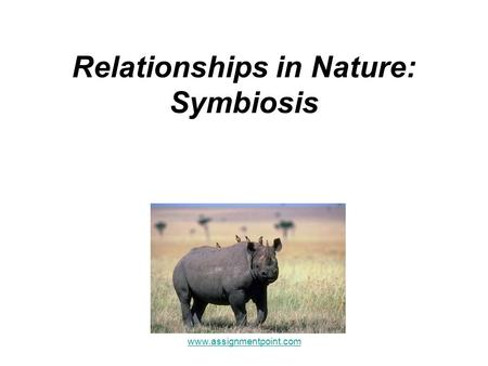 Relationships in Nature: Symbiosis www.assignmentpoint.com.