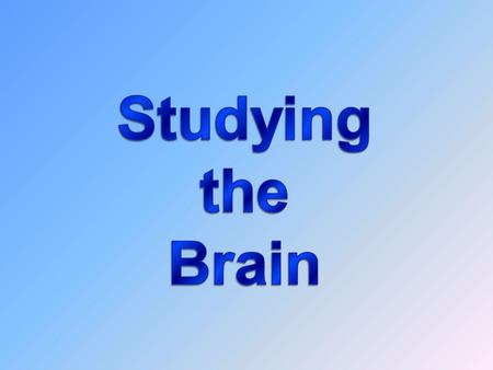 Biology and Behavior Neuroscience  Scientific study of the brain and of the links between brain activity and behavior.