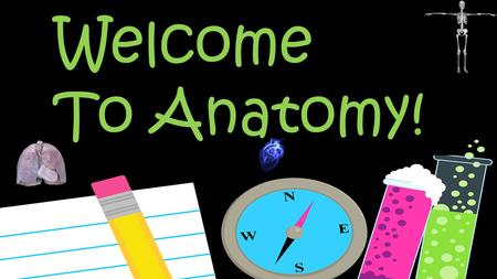 Welcome To Anatomy!. I went to Solon and had some of your teachers My  is