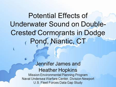 Potential Effects of Underwater Sound on Double- Crested Cormorants in Dodge Pond, Niantic, CT Jennifer James and Heather Hopkins Mission Environmental.
