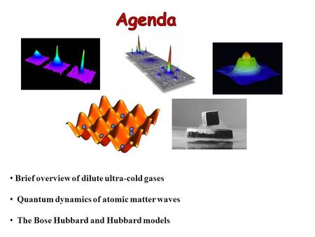 Brief overview of dilute ultra-cold gases Quantum dynamics of atomic matter waves The Bose Hubbard and Hubbard models.