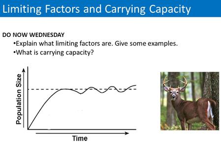 Limiting Factors and Carrying Capacity DO NOW WEDNESDAY Explain what limiting factors are. Give some examples. What is carrying capacity?