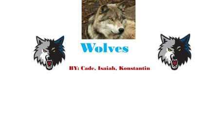 Wolves BY: Cade, Isaiah, Konstantin. Food (Predator/Prey) Here are some prey of the wolf. raccoon Moose Deer Rabbits Sheep Birds Elk Bison Here are some.