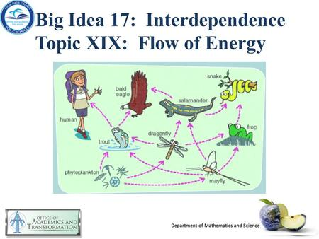 Big Idea 17: Interdependence Topic XIX: Flow of Energy.