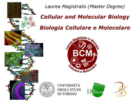 Laurea Magistralis (Master Degree) Cellular and Molecular Biology Biologia Cellulare e Molecolare.