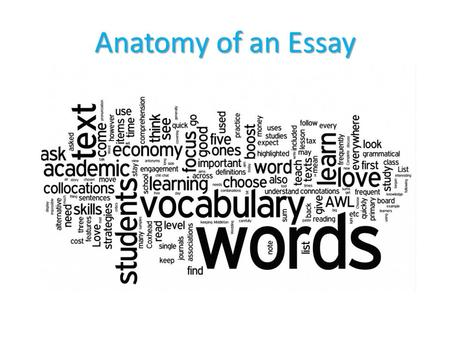 "Anatomy of an Essay. II Introduction ""Hooks"" the reader Provides Background Establishes Context Leads to thesis."