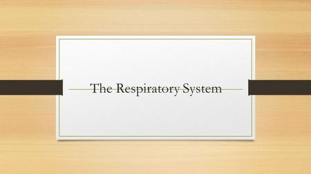 The Respiratory System. 3 Respiration Includes Pulmonary ventilation Air moves in and out of lungs Continuous replacement of gases in alveoli (air sacs)