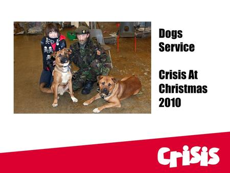 Dogs Service Crisis At Christmas 2010. Dogs Service Organiser: Lisa MacDougall CC Dogs Service.