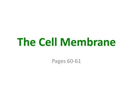 The Cell Membrane Pages 60-61. The Cell Membrane.