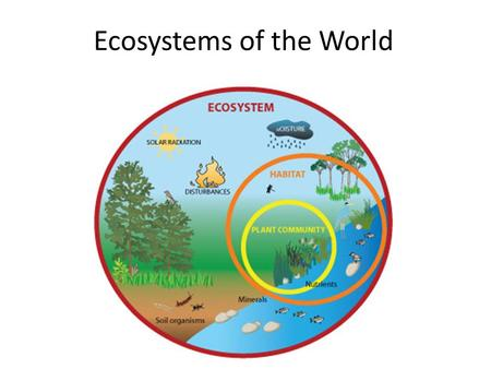 Ecosystems of the World AP Study Review. Naming Ecosystems Terrestrial Ecosystems = Biomes – Separated based upon their climate, which involves average.