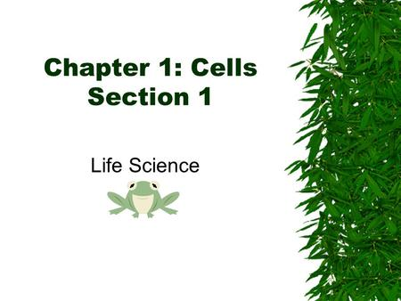 Chapter 1: Cells Section 1 Life Science. Do you Remember?  All living things are organized…  A Cell is the basic unit of structure in living things.