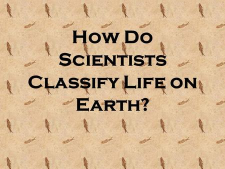 How Do Scientists Classify Life on Earth?. Life On Earth Scientists have identified approximately 2.5 million species of organisms on Earth, but estimate.